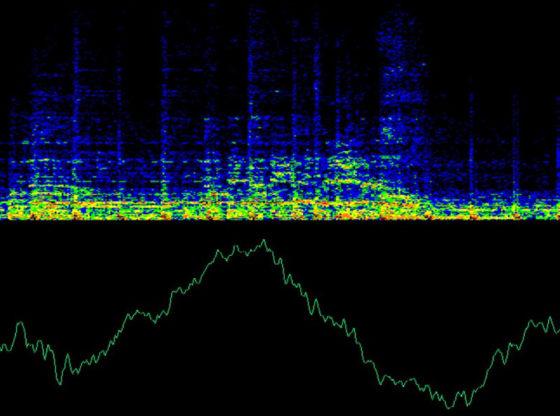 L'immagine raffigura un grafico composto da uno spettro e una linea sonori