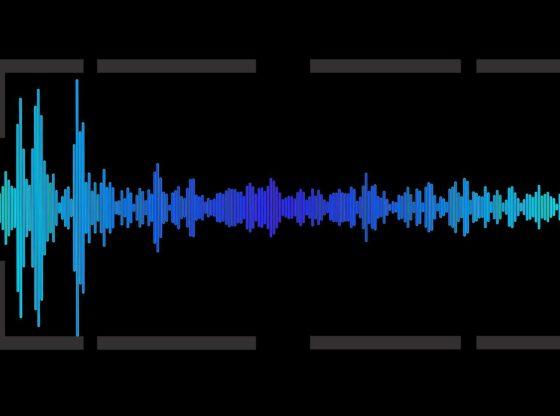 L'immagine mostra uno spettro sonoro